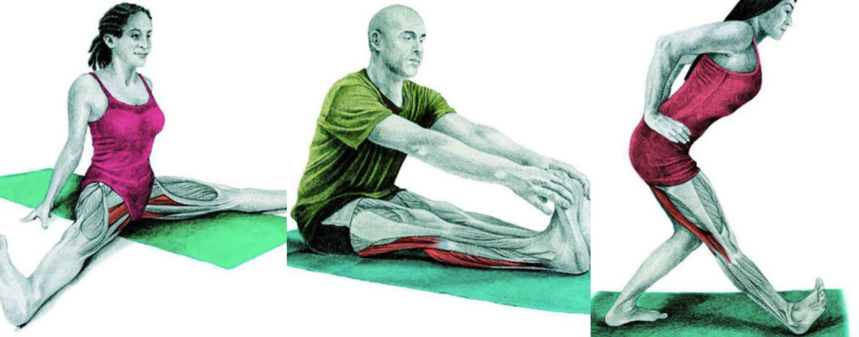 10 упражнений на растяжку ног: как мышцы тянутся на самом деле